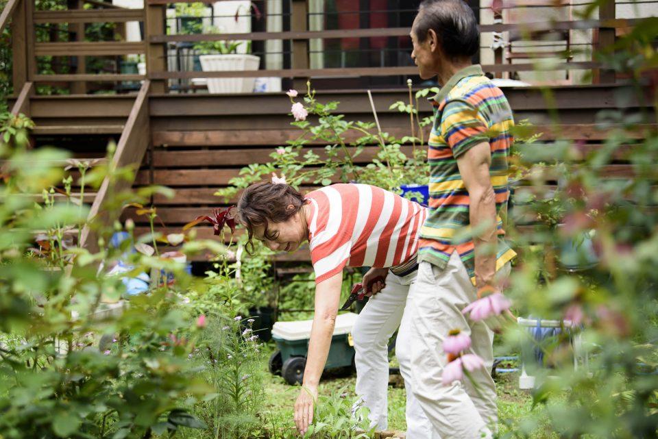 広いお庭をご夫婦二人で力をあわせてお手入れ