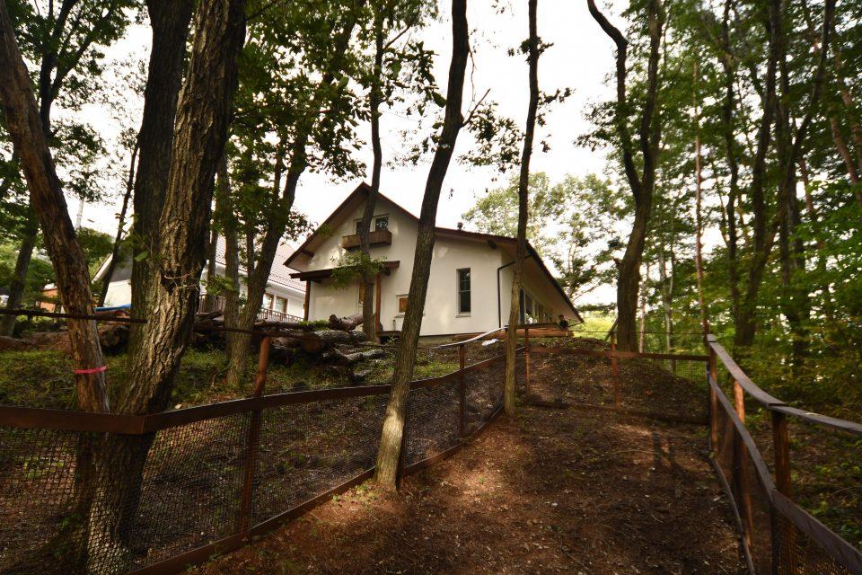 敷地の西側は傾斜地となっており、ドッグランが設けられた。 工事前に伐採された樹木も残して、今後薪割りする予定。