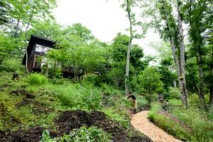 カフェと庭と高田様