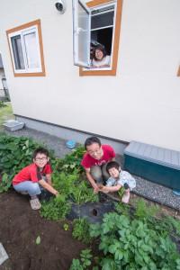 41.家庭菜園で新鮮な野菜が採れます